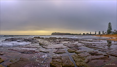 There's a storm in there (JustAddVignette) Tags: australia clouds cloudy cloudysunrise collaroy dawn headland hightide landscapes newsouthwales northernbeaches ocean panorama rocks sand seascape seawater sky sunrise swell sydney water waves
