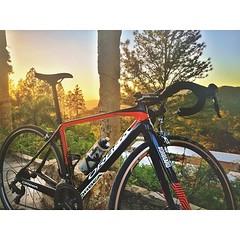 Felices fiestas 🎉 🎉 🎉 . Moca ♥  . . . . . . #LaBicicleteriaDO #OrbeaRD #MyOrbea #OrbeaOrca #Love #Bicycle #MountainBike #MTBBrasil #Shimano #PrefiroPedalar #Rideshimano #RDLoTieneTodo #Cycling #Ciclista #Ciclismo #Bike #Coffee #food #BikePo (STIoficial) Tags: stioficial instagram turismo republicadominicana dominicana tourism travel trip dominicanrep dominican andoenrd