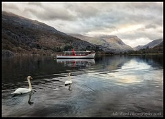 Post card from Llanberis (awardphotography73) Tags: phototherapy iphone nature scenery cymru tranquility boat water swans mountains snowdonia nationalpark lakes llanberis northwales