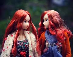 Chatting (♥ Lily Queens ♥) Tags: momoko doll sekiguchi robin retro mermaid rose fall wild love