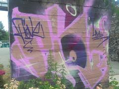 151 (en-ri) Tags: piove lme crew arrow marrone viola rosa parco dora torino wall muro graffiti writing