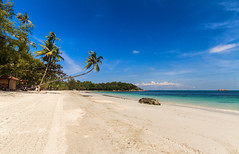 Beach in Indonesia (world.wideweg) Tags: indonesia beach lagoi bintan asia sun ocean sea sand palms nirwanabeachresort resort hotel privatebeach nopeople perfectbeach holiday vacation trip travel reise