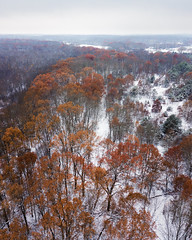 The path that runs through the Eliason Nature Reserve (bill.d) Tags: dji djimavicpro eliasonnaturereserve kalamazoocounty michigan portage us unitedstates aerialphotography drone fall flying fog landscape nature outdoor overcast park snow weather winter