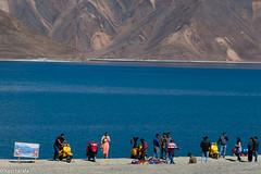 367-himalaiaIndi-PangongTso--3idiots-P1140493 (Xavi Tarafa) Tags: himalaiaindi2018 india ladakh lago lake llac pangong pangongtso