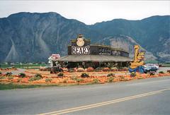 1999-10-21x-aa_igb (ibeardsell) Tags: keremeos bc 1999 pumpkins mountains