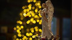 Angelic bokeh- Merry Christmas everyone! (Karon Elliott Edleson) Tags: bokeh angel christmas decorations lookingcloseonfriday angels season wings christmasdreams christmasbokeh creativetabletopphotography