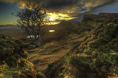 Christmas Eve tree (SkyeBaggie) Tags: quiraing trotternish tree trotternishridgeisleofskyescotland sunrise canon 5diii zeiss skye scotland landscape classic hebrides highlands