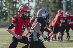 2018WP7-NWCOUGHM1062 (sumnervalleywolfpack) Tags: action activity athletics daylight football footballorganization outdoorsports outdoors performance practice recreation sportsgame sportsphotography teambuilding teamplayer teamspirit teamsports washingtonfootball wolfpack youthsports 98390 washington usa
