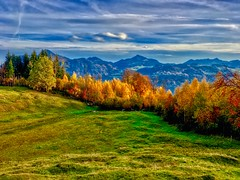 Colors of fall on Hocheck near Oberaudorf, Bavaria (UweBKK (α 77 on )) Tags: bavaria bayern germany deutschland europe europa iphone fall autumn herbst sky blue clouds tree trees forest grass field mountains colors color colours colour colorful colourful hocheck oberaudorf