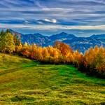 Colors of fall on Hocheck near Oberaudorf, Bavaria thumbnail