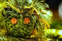 "The very hungry Caterpillar 😉 for Macro Mondays ""GREEN"" (VintageLensLover) Tags: hmm macromondays green grün caterpillar raupe makro makroaufnahme wolle sonya7ii bokeh bokehlicious schärfentiefe schärfeverlauf"