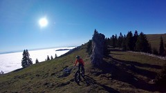 Today's View (29in.CH) Tags: fall autumn fatbike ride 16112018