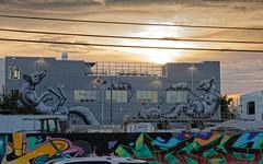 Rodents (OliveTruxi (2 Million views Thks!)) Tags: arturbain miami roa streetart urbanart wallart wynwood wynwoodwalla florida unitedstates