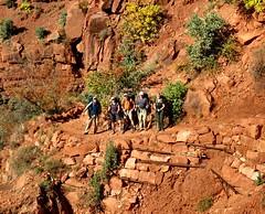 Upper North Kaibab Trail (knutsonrick) Tags: