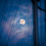 Sail Moon thumbnail