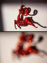 Zeiss-Ikon Talon - projection lens 85mm f/2.8 (Sebastian Pier Filip) Tags: zeiss canon 5d fullframe bokeh zeissikon zeissikontalon f28 projectorlens vintagelens carlzeiss carlzeissjena