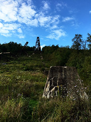 IMG_6449_eh (wyldanthem) Tags: allegheny national forest