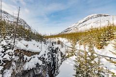 Marble Canyon (deirdre.lyttle) Tags: marblecanyon bc canada ice canyon kootenaynationalpark ngc