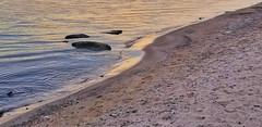 Serenity at the Shoreline (KWPashuk) Tags: samsung galaxy s8 s8plus lightroom luminar luminar2018 kwpashuk kevinpashuk shoreline peace water lake rocks beach goldenhour park coronation oakville ontario canada