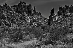 An Unearthly Look to a Big Bend Landscape (Black & White, Big Bend National Park) (thor_mark ) Tags: nikond800e day3 triptobigbendnationalpark bigbendnationalpark grapevinehillstrail grapevinehills lookingse blackwhite silverefexpro2 capturenx2edited colorefexpro desert desertlandscape desertplantlife desertmountainlandscape outside nature landscape sunny blueskies mountains mountainsindistance mountainsoffindistance mountainside chihuahuandesert usbiospherereserve intermountainwest southwestbasinsandranges transpecostexasranges bigbendranges hikingtrail naturetrail largerocks boulders project365 portfolio tx unitedstates