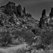 An Unearthly Look to a Big Bend Landscape (Black & White, Big Bend National Park)