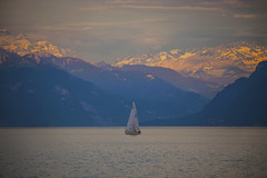 Sailing by the Alps (CraDorPhoto) Tags: canon6d lake water landscape boat yacht alps mountains outdoors lacleman lakegeneva switzerland