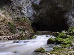 P1107720-LR (carlo) Tags: pana panasonic g9 dmcg9 slovenija slovenia rakovškocjan rak riodeigamberi notranjska caves river