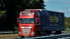 NL - Leverink Rijssen >Gefco< DAF XF 106 SSC (BonsaiTruck) Tags: leverink gefco daf lkw lastwagen lastzug truck lorry camion caminhoes