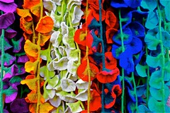 Colorful flowers (Roel Wijnants) Tags: ccbync roelwijnants roelwijnantsfotografie roel1943 textiel bloemen ranken kleuren kleurig fietsen denhaag thehague hofstijl haagspraak absolutelythehague lovethehague thisisthehague gebruiksvoorwaardenlezen cityilove cityfolk