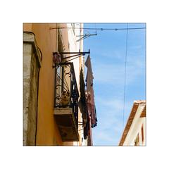 olá ! (MR@tter) Tags: lissabon lisbon lisboa alfama dog balcony laundry rahmen sonydscrx100m3