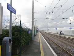 BOOTERSTOWN TRAIN STATION [GEO-TAGGED]-148128 (infomatique) Tags: booterstown railwaystation dart trainstation birdsanctuary antaisce mallard teal moorhen waterrail greyheron littleegret redshank greenshank curlew snipe oystercatcher bartailedgodwit kingfisher sedgewarbler naturereserve swamp william murphy infomatique fotonique streetsofdublin sony hx90v