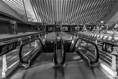Luik, Station Liège-Guillemins. (What's Around) Tags: stationliègeguillemins 1750mm luik station trainstation binnenzicht