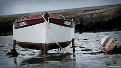 Low tide (patrick_milan) Tags: fishing boat buoy buoyant tide water finistere portsall