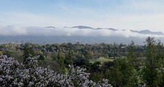 After the Rain (ANiceCupofTea) Tags: pasadena california sangabrielmountains brooksideparkgolfcourse