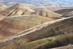The Painted Hills VIII (Eclectic Jack) Tags: eastern oregon trip october 2018 rural autumn fall mountains painted hills hill central paintedhills thepaintedhills
