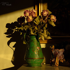 StillLife III (Perry J. Resnick) Tags: pjresnick perryjresnick pjresnickgmailcom pjresnickphotographygmailcom ©2019pjresnick ©pjresnick light fuji fujifilm highspeediso digital shadow texture shadows angle perspective fujinonxf35mmf14r 35mm xf35mm xf35mmf14 xf fujinon resnick soft depthoffield indoor stilllife morninglight sunrise driedflowers flowers vase ceramic pictureframe warmlight