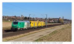 BB75073 Infra - Hochfelden (CC72080) Tags: prima bb75000 fret infra sncf train locomotive lokomotive zug güterzug hochfelden réseau