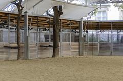 Lipizzaner Stallion Training Facilities (rschnaible) Tags: vienna austria europe spanish riding school work production lipizzaner horse training