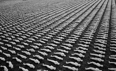 The Shrouds of The Somme (mre1965) Tags: somme ww1 remembrance