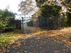 2018-11-14 10.27.50 (aimiecoltelli) Tags: downham grove park eltham south east london chrinbrook meadows railway station