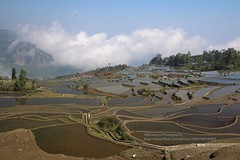 Yuanyang Terraces, Duoyhishu area, blue terraces (blauepics) Tags: china yunnan province provinz yuanyang landscape landschaft nature natur scenery rice terraces reisterrassen terrassen mountains berge water wasser unesco world heritage site weltkulturerbe clouds wolken farming agriculture landwirtschaft farmers bauern minorities minderheiten duoyhishu blue blaue