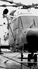 XZ 622 - Westland Lynx WG13 (Laurent Quérité) Tags: canonfrance canonae1 noirblanc blackwhite helicoptere aviation aéronef aéronavale aéronautiquenavale frenchnavy marinenationale militaryaircraft xz622 westland lynxwg13