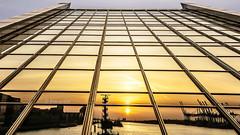 Im Dockland spiegelt sich die Elbe (petra.foto busy busy busy) Tags: hamburg hafen elbe wasser flus germany reflexion spiegelung sonnenuntergang langzeitbelichtung architektur fotopetra 5dmarkiii