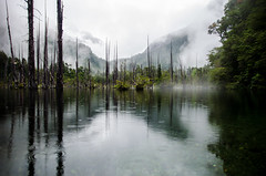 Tagua-20 (NicolasMunozFotografia) Tags: landscape awesomeshot awesome shot photo incredible increible chile cochamo tagua parque clouds reflection reflex nikon sigma 28 raining rain sadnes sadness after storm