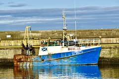 BCK21 Blue Sky - Fraserburgh Harbour - Aberdeenshire Scotland - 13/11/2018 (DanoAberdeen) Tags: danoaberdeen danophotography fraserburghscotland fraserburgh aberdeenscotland aberdeenshire trawlers trawlermen fishingtrawlers scottishtrawlers salmon haddock cod shellfish workboats tug northsea 2018 candid amateur autumn summer winter spring fraserburghharbour fish fishing fishingtown fishingport seafarers maritime whitefish whitefishport creels broch thebroch shipspotting shipspotters fishingboat northeast northeastscotland ship boat harbour lifeatsea shipbuilding marine northseafishing northseatrawlers bck21 bluesky