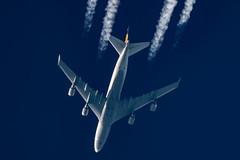 Lufthansa Boeing 747-430 D-ABTK (Thames Air) Tags: lufthansa boeing 747dabtk contrail telescope dobsonian contrails overhead vapour trail