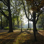 Autumn in Amsterdam thumbnail