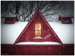 Winter (1) (hoedh) Tags: pentax 645z 55mm medium format manor homestead winter snow