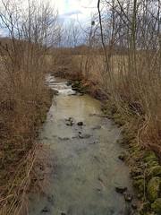 Bassecq en eaux troubles (Marie-Hélène Cingal) Tags: cagnotte 40 landes heugac bassecq ruisseau stream