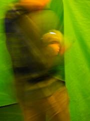A Double Header (Steve Taylor (Photography)) Tags: digitalart brown green newzealand nz southisland canterbury christchurch blur distorted